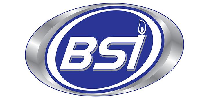 Logo_BSI_AESA_México